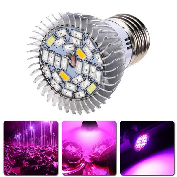 plantlamp, growlightkit, Plants, Flowers
