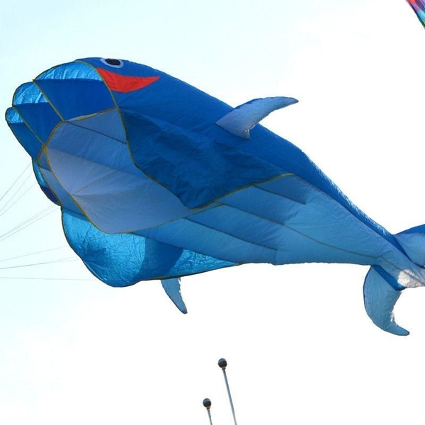 Blues, easytocarry, kitewith100line3ddolphinkite, parafoilkite