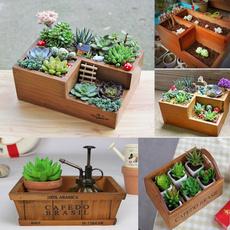 plantpot, Box, Plants, Flowers