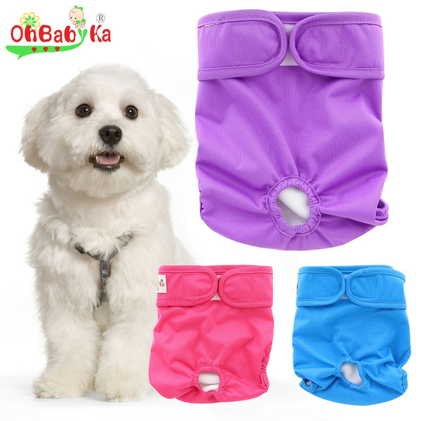 washable, Panties, Pet Apparel, Pets