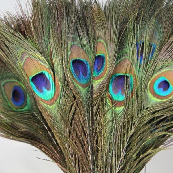 Mini, Home Decor, peacock, Home & Living