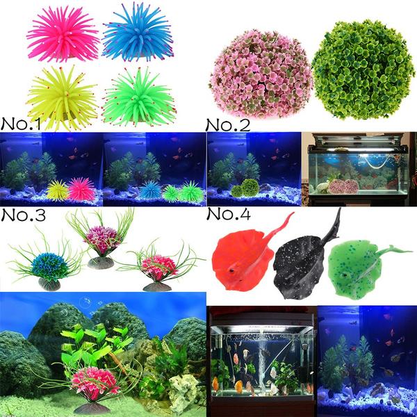 water, Plants, fishaquarium, Tank