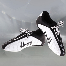 casual shoes, laceupshoe, Sneakers, Mens Shoes