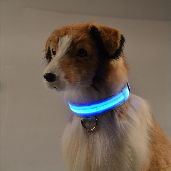 led, Jewelry, lead, Pets