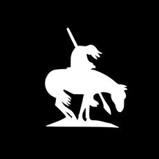 Car Sticker, horse, horsesticker, Cars