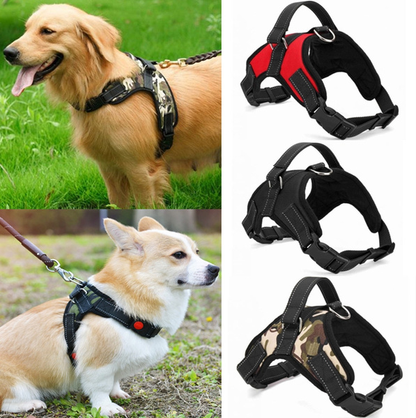 PAECP-RACPB14 Car Dog Harness Large Adjustable Straps Padded Chest By RAC