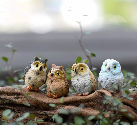 cute, gnome, Owl, Accessories