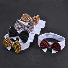 dogbowtie, Hobbies, Pets, Dogs