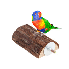 play, Toy, Parrot, Wooden