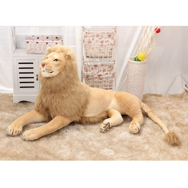 Plush Toys, Plush Doll, Toy, Photo Studio