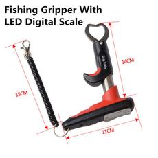 led, fish, tapemeasure, Fishing Tackle