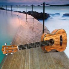 Fashion, Musical Instruments, ukulele, beginnersukulele