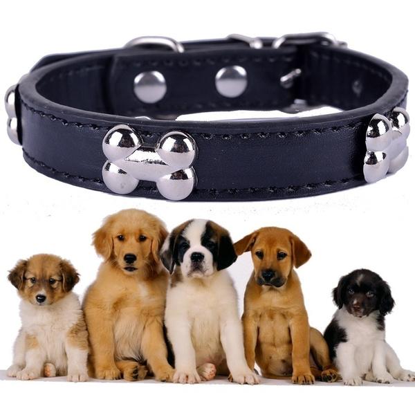 Charm, Fashion, puleatherdogcollar, leather
