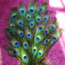hairdecoration, peacock, Decor, clothesdecal