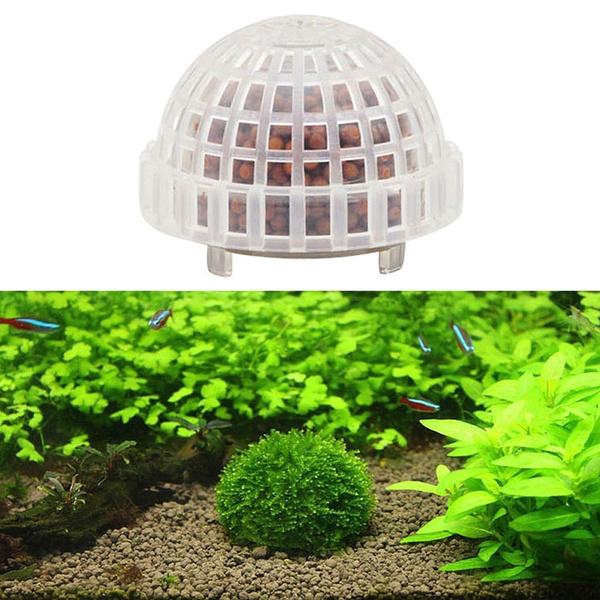fishaquarium, Tank, naturalmineralball, aquaticplant