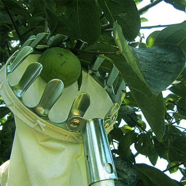 convenientfruitpicker, Fashion, Gardening, Apple