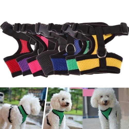Vest, puppy, Pets, Harness