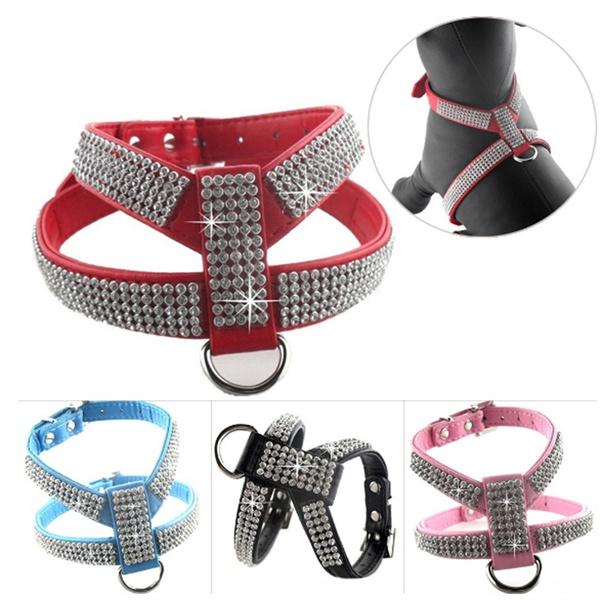 Sparkly, Dog Collar, Jewelry, dogharnes