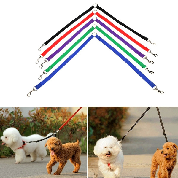 collarleash, dog coat, petcollarleash, Colorful