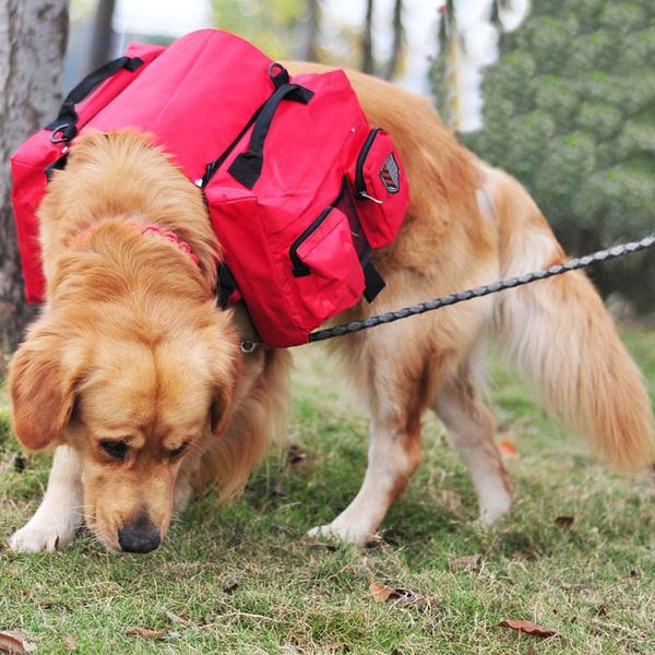 harnesspackage, Outdoor, camping, carriersamptote