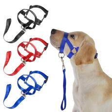 Training, Nylon, petaccessorie, Dogs