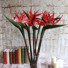 party, Plants, Garden, Home