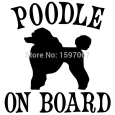 poodleonboard, puppy, art, Funny