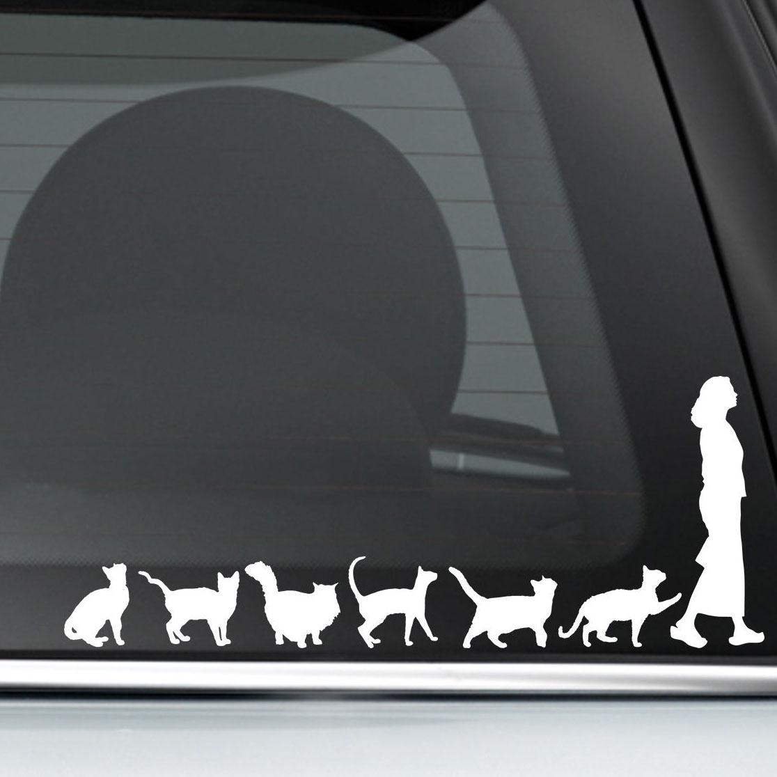 Horayten Car Styling Vinyl Decal Warning Missing Cat Lady Friendly Love Boys Auto Window Tail Sticker 180x45mm