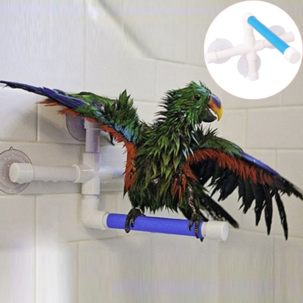 Toy, folding, petaccessorie, birdtoy