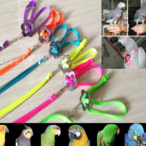 birdleash, petaccessorie, Home & Living, Harness