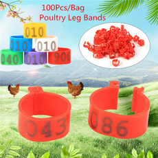 poultry, numbered, petaccessorie, poultrylegband