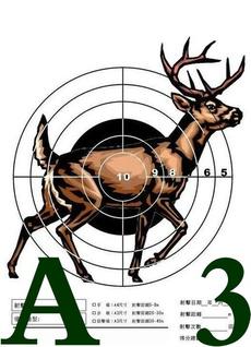 Archery, Outdoor, paste, target