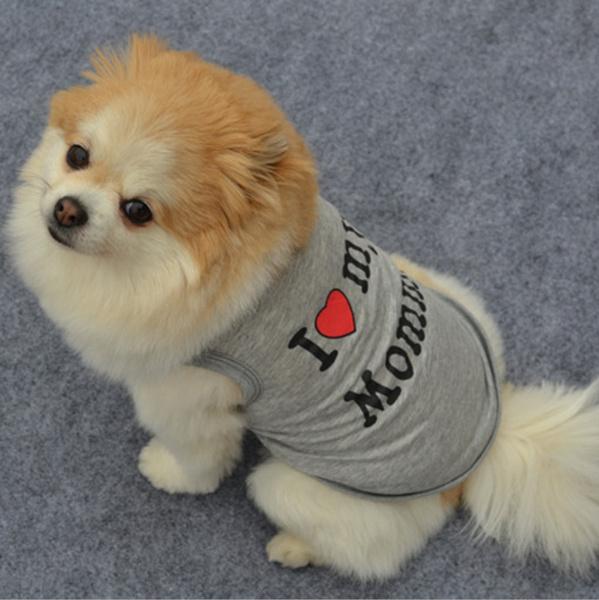 cute, Vest, Fashion, Shirt