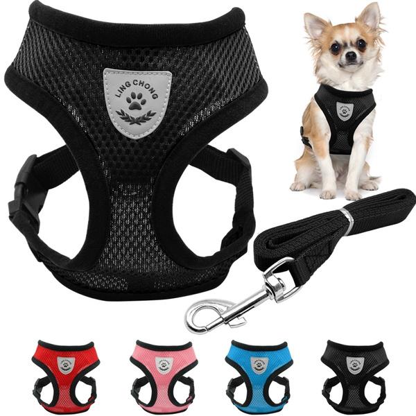 Harness, Vest, Fashion, Pets