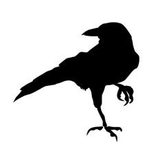 Laptop, Home Decor, raven, artmuraldecal