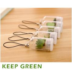 Plants, Key Chain, Jewelry, Gifts