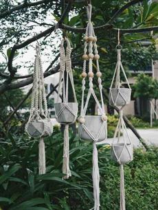 plantpotholder, hangingpotstandholder, Plants, flowerplantsampseedling