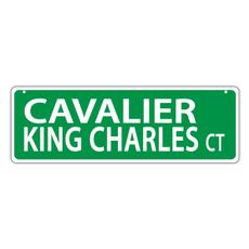 King, cavalierkingcharlesspaniel, Animal, Plastic