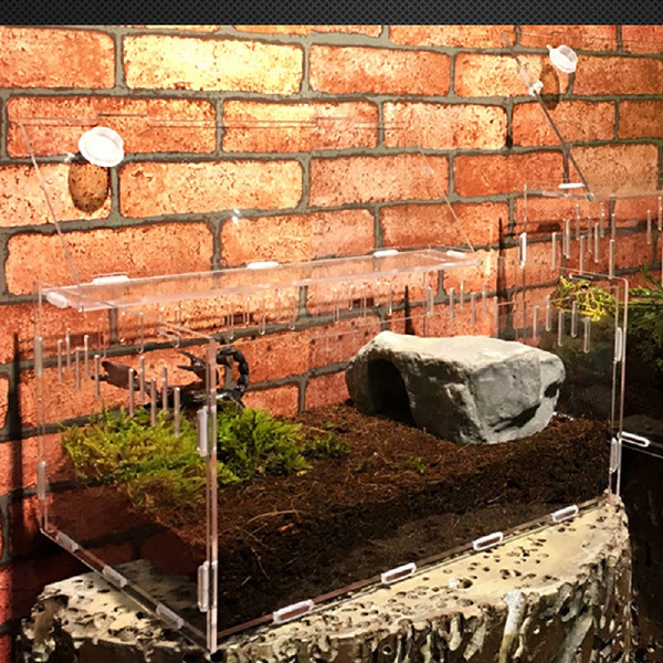 Box, insectsampbughabitat, Pet Products, breedingbox