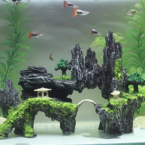 Tank, Home Decor, rockery, fish