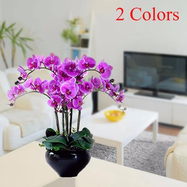 Bonsai, butterfly, Plants, Fashion