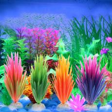 aquariumsaccessorie, Plants, Tank, watergra