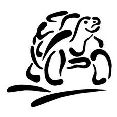 Funny, tortoise, Animal, Laptop