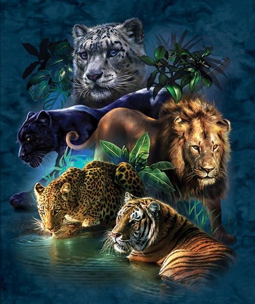tigerandlion, DIAMOND, Jewelry, wallartsticker