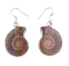 ammonite, Natural, Jewelry, Gifts