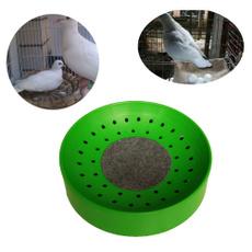 birdeggeasin, bowlmat, birdsin, pigeonsupply