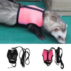 Harness, Vest, Outdoor, rabbit