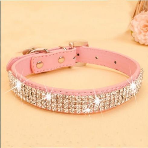 Fashion, Dog Collar, Jewelry, Crystal