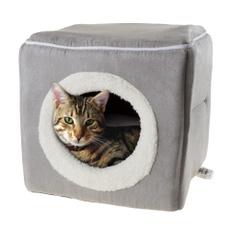 Cats, Beds, Furniture, Leopard