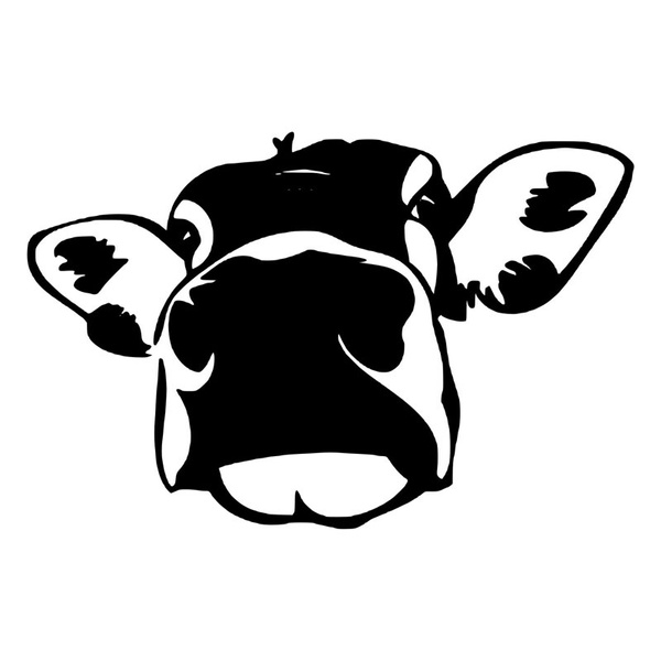Funny, cow, Car Sticker, interesting